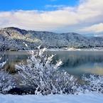 NIKON NIKON D800で撮影した(余呉湖の冬景色)の写真(画像)