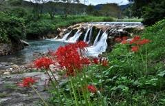 秋移ろう十二ヶ滝