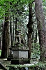 大杉神社 狛犬阿形