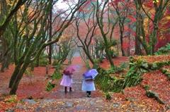 散り紅葉踏みて