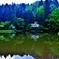 新緑の平池