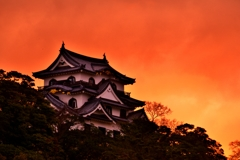 春暁の彦根城