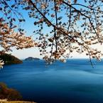 NIKON NIKON D600で撮影した(奥琵琶湖春色)の写真(画像)