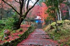 鶏足寺(旧飯福寺)本堂