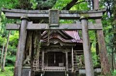 大杉神社 鳥居と拝殿
