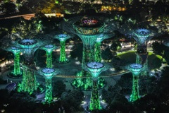 "Gardens by the Bay  ""Supertree Grove"""