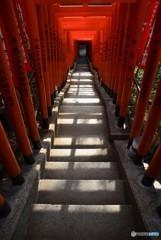 朱に染まる階段・・・