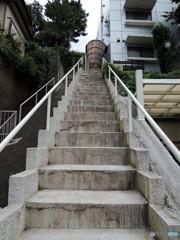 玄関への・・・階段