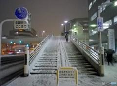 雪中歩行!