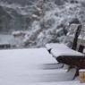 雪の平和の森公園2