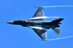 ギフのF-2