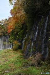 秋色 白糸の滝(Resize)