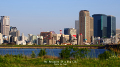 Big city☆