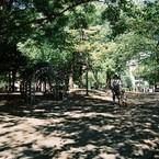 PENTAX P30Nで撮影した(散歩~いつもの公園で~)の写真(画像)