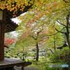 神蔵寺境内