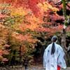 鍬山神社5