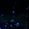 NIKON NIKON D700で撮影した(重たい水)の写真(画像)