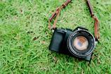 カメラ日和