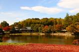 秋を留める Ⅱ