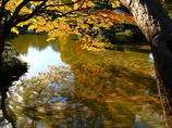 黄粱一炊の秋 (コウリョウ イッスイノアキ)