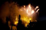 銀杏並木の花火大会