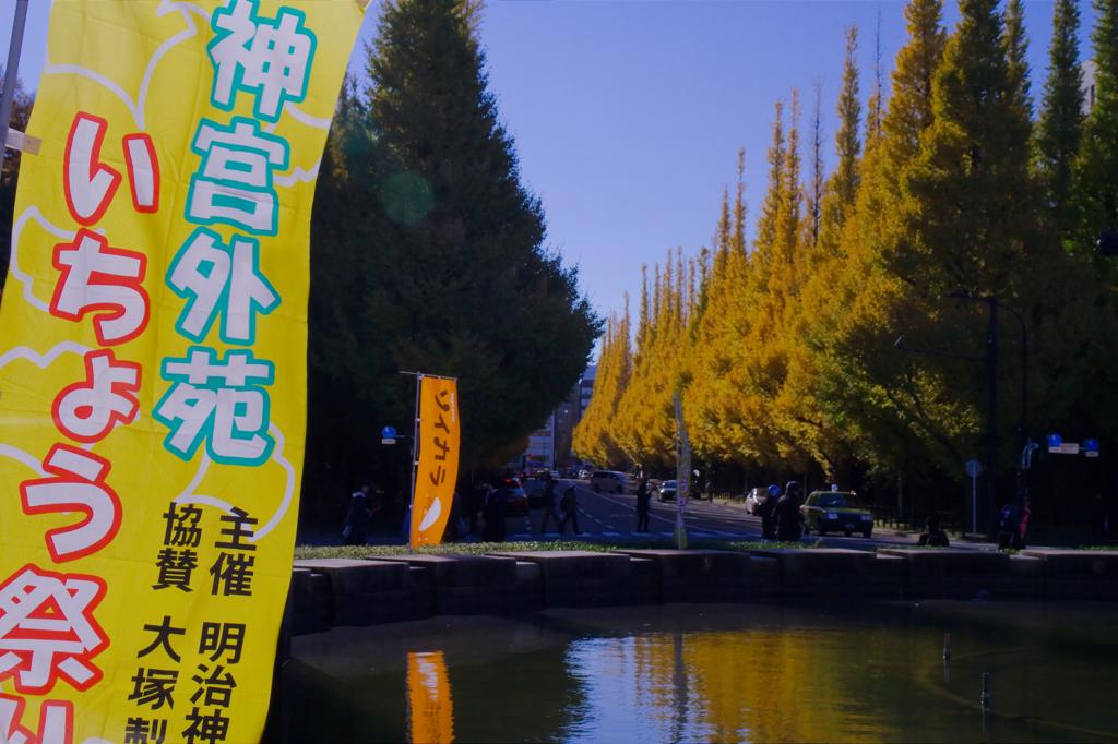 神宮外苑いちょう祭り開催中