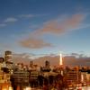 黎明の東京タワー