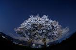 常念道祖神・桜と星空