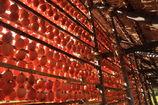 たくさんの干し柿