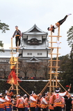 加賀とびはしご登り