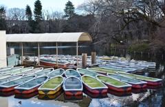 ボート ボート ボート
