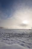 湖畔のヒカリ