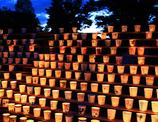 紙コップの竹燈夜