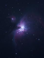 0317オリオン大星雲
