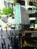 雨の向こうの街