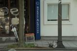 傘とか椅子とかのある街角