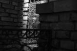 銀座のラビリンス(迷宮)