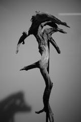 Jump!~DRY BONSAIアート