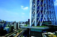 東京スカイツリーの 脚