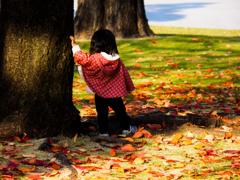 落葉のメロディー♪