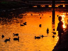 夕暮れの運河(その3) 〜 水辺に立つ少年 〜