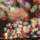 夜空を彩る千輪菊