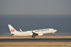 JAL 737
