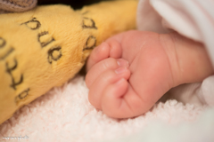 Hand of baby♪