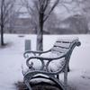 Snowfall park