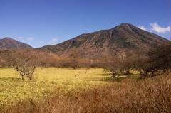 戦場ヶ原 (1)2014-11-04