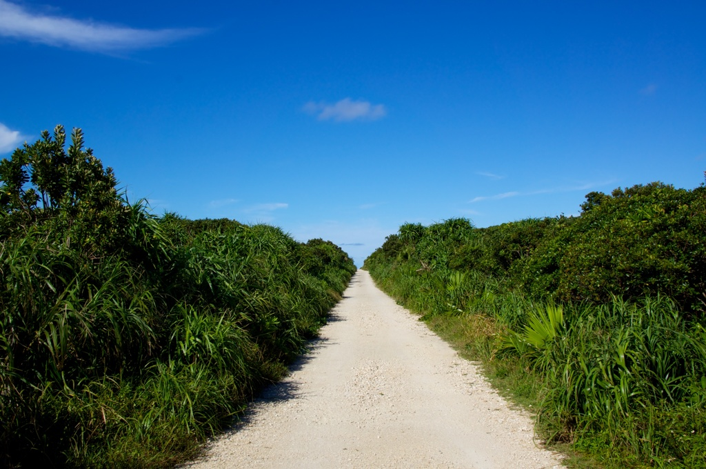 久高島の道