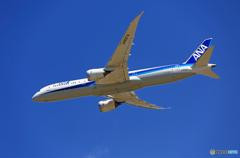 「良い空~」 ANA 787-9 JA837A離陸