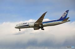 「良い空~」ANA 787-8 JA829A着陸