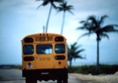 南国のスクールバス